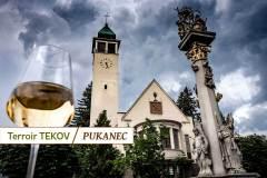 terroir_tekov_pukanec